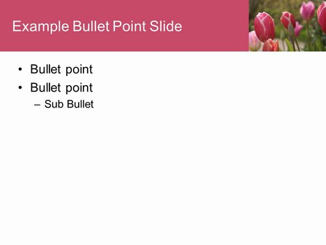 Tulips PowerPoint Template inside page