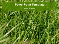 Turf PowerPoint Template thumbnail