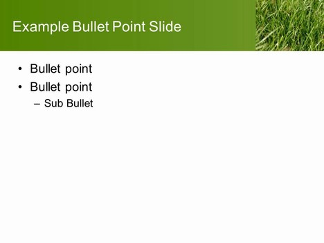 Turf PowerPoint Template inside page