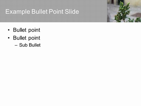 Green Plant PowerPoint inside page