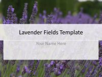 Lavender Fields Powerpoint Template