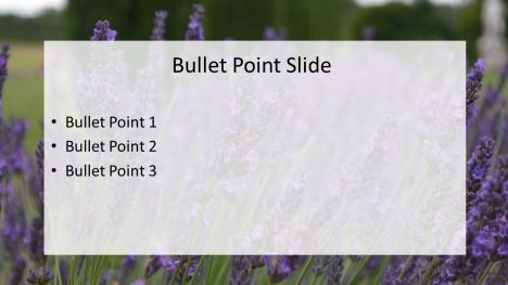 Lavender Fields Powerpoint Template inside page
