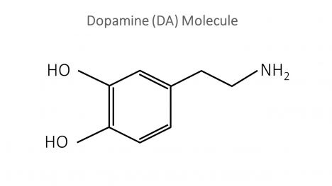 Dopamine Molecule PowerPoint Template inside page