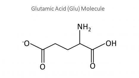 Glutamate Molecule PowerPoint Template inside page