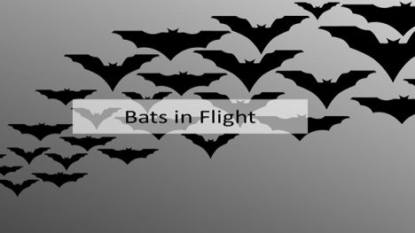 Halloween Bats PowerPoint Template