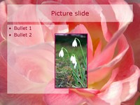 Romantic flowers PowerPoint Template slide4