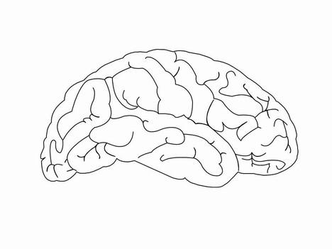 Luscious image with printable brain template