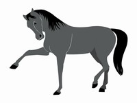 Horse Clip Art Template slide4