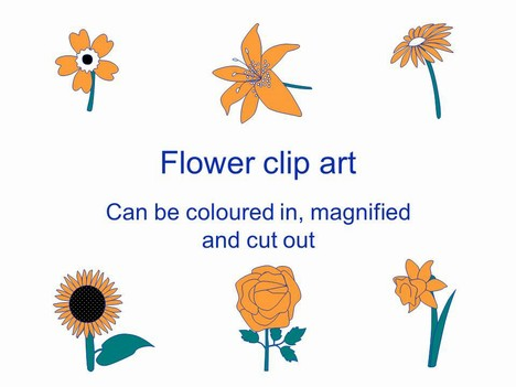 Flower Outlines Clip Art PowerPoint Template
