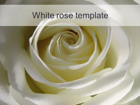 free powerpoint templates roses