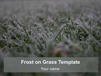Frost on Grass Template