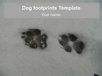Dog Footprints Template