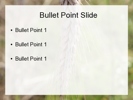 Ear of Wheat PowerPoint Template inside page