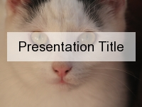 White Cat PowerPoint Template thumbnail