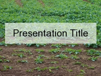 Soil Health PowerPoint Template thumbnail