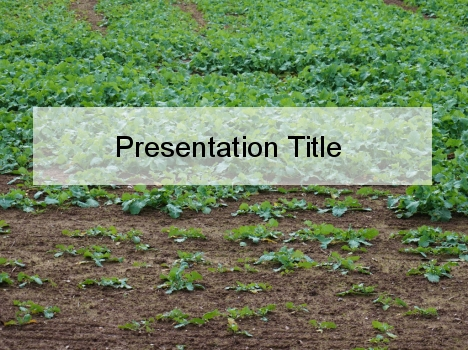 Soil Health PowerPoint Template