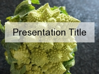 Romanesco Broccoli PowerPoint Template